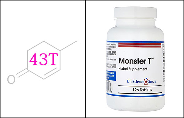 Monster T Review