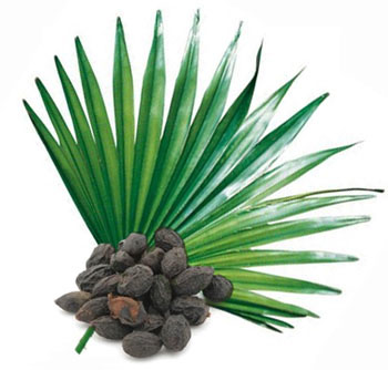 Saw Palmetto HighT Senior ingredients